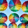 umbrella-3616282_1920