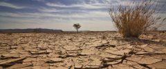 Limitare il riscaldamento globale si può